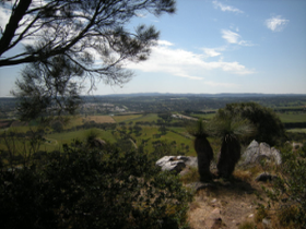 mt barker town from the summit